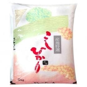 【平成30年産】山形県村山産コシヒカリ精米5kgはえぬき精米4kgのセット