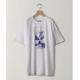 BEAUTY&YOUTH UNITED ARROWS / ビューティ&ユース ユナイテッドアローズ <DREAMLAND SYNDICATE> SNOW BRIDGE TEE/Tシャツ