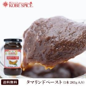 タマリンドペースト 283g 1本 通常便 tamarind paste お漬物 食材 調味料 材料 ソース