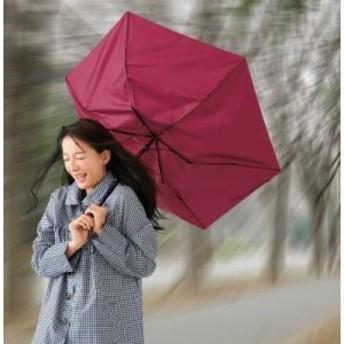 【送料無料】2690940 【60個セット】折りたたみ耐風傘1本