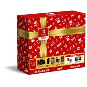 Nintendo Switch ビックカメラグループ 限定セット