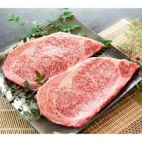 土佐和牛(黒毛) サーロインステーキ用 500g