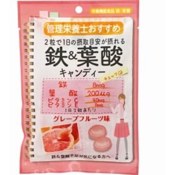 管理栄養士おすすめ 鉄&葉酸キャンディー 70g【6個セット】(4902786385653-6)