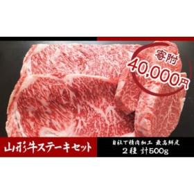 山形牛ヒレ・ロースステーキセット (2種) 500g
