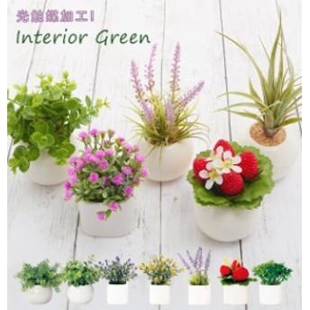 光触媒観葉植物 おしゃれ 通販 観葉植物 光触媒 フェイク 小さい 枯れない 造花 フェイクグリーン リアル インテリアグリーン ミニ