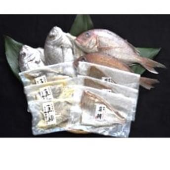玄界灘の天然真鯛4種