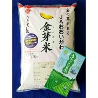 静岡県産 JAおおいがわ「金芽米5kg(無洗米)」・「JAおおいがわのお茶80g」セット