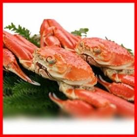 キングマカデミアンJAPAN ずわい蟹 2杯 (500gupx2) K910020  プラザセレクト 送料無料
