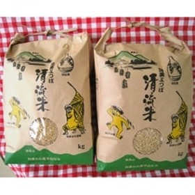 【加美町産】清流米 ひとめぼれ 8kg