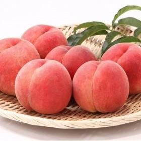 厳選白桃 たっぷり5kg! 硬めの品種おまかせ 秀品 (12~20玉) 015-B17
