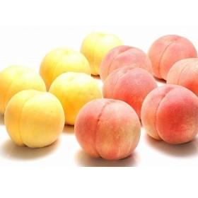 これぞ贅沢! 白桃(硬め)と黄桃の食べ比べセット3kg 秀品 (8~12玉) 015-B19