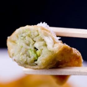 【送料無料】 もっちり餃子20個 高鍋餃子 ぎょうざ ギョウザ 餃子の馬渡 【冷凍】