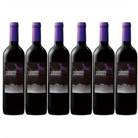 ワイン 赤ワインセット コンドール・アンディーノレセルバ・マルベック 1種6本セット 送料無料 赤ワイン フルボディ まとめ買い アルゼンチン