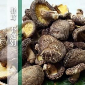 大分県産 原木栽培 天日乾しいたけ(不選別)200g 椎茸/大容量/どんこ