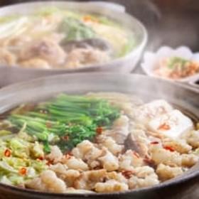 【宇美町】博多若杉もつ鍋(4~5人前)・水炊き(4~5人前)贅沢セット