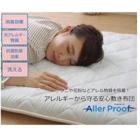 イケヒコ・コーポレーション 敷き布団 シングル 寝具 抗菌防臭 アレル物質吸着 『ヌード  アレルプルーフ』 約100×210cm
