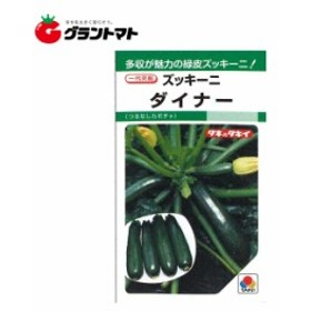 【タキイ種苗】野菜種子小袋  ズッキーニ ダイナー南瓜【ゆうパケット可】