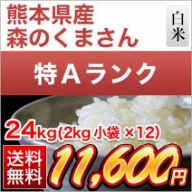 30年 熊本県産 森のくまさん 白米 24kg(2kg×12袋)【送料無料】