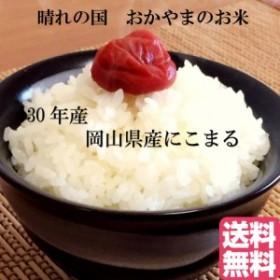 ポイント消化 300g 送料無料 300 g 食品 米 お試し 岡山県産にこまる 300g(2合)1kg未満 代金引換不可