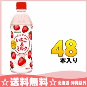 サンガリア まろやかいちご&ミルク 500ml ペットボトル 48本 (24本入×2 まとめ買い)