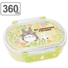 お弁当箱 小判型 となりのトトロ プランツ 360ml 子供 キャラクター ( 弁当箱 幼稚園 保育園 食洗機対応 電子レンジ対応 プラスチック