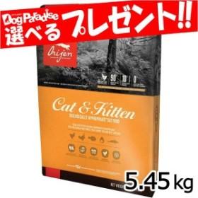 【オリジンキャンペーン1月末まで】オリジン キャット&キトゥン 5.45kg