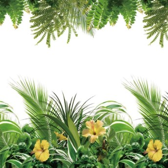 インテリアシール 壁のインテリア フェイクグリーンの窓飾りシート<90×90cm> 「トロピカル」