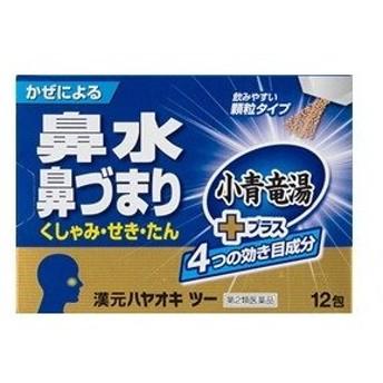 「薬王製薬」 漢元ハヤオキ ツー 顆粒タイプ 12包入 「第2類医薬品」