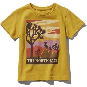 トレッキング アウトドア カジュアル S/S Graphic Tee ジュニア THE NORTH FACE (ノースフェイス) NTJ31937 LY LY