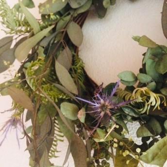 ユーカリのドライグリーン wreathe