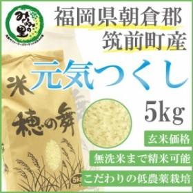 【筑前町みなみの里】福岡県朝倉郡筑前町産 元気つくし 玄米 5kg【玄米から精米、無洗米までつき方選べます】【みなみの里関連商品は1