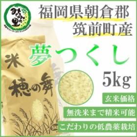 【筑前町みなみの里】福岡県朝倉郡筑前町産 夢つくし 玄米 5kg【玄米から精米、無洗米までつき方選べます】【みなみの里関連商品は150