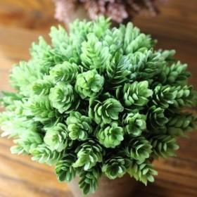 【お取り寄せ】フェイクグリーン 観葉植物 植木鉢入り (小)