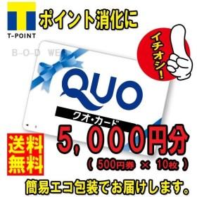 ネコポス発送 送料無料 美品 QUOカード 5000円分(クオカード 金券 商品券 ポイント消化)