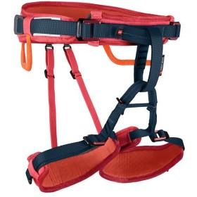 マムート(MAMMUT) クライミング ハーネス キッズ Ophir Kids barberry onesize 2020-00811-3218 子供 アウトドア 登山 クライミング用品 トレッキング