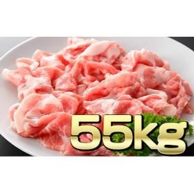 宮崎県産豚定期便<毎月5kg×11回 合計55kg>【F17】