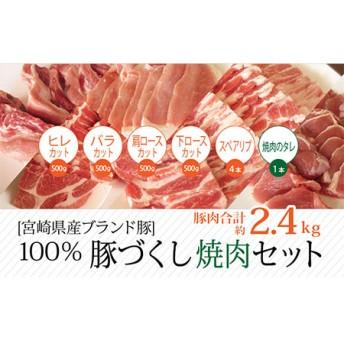 宮崎県産豚 焼肉セット 約2.4kg【B234】