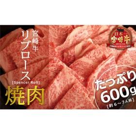 宮崎牛リブロース焼肉600g【C95】