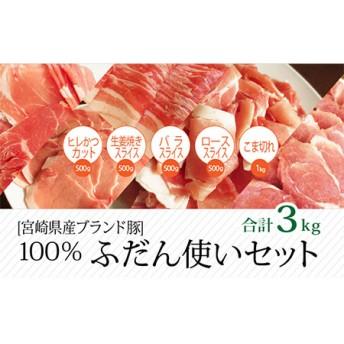 宮崎県産豚 普段使いセット 合計3kg【B235】