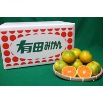 【大玉】和歌山の有田みかん(極早生) 約10kg 2L~4Lサイズ混合