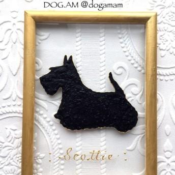 DOG. AM ガラスフレーム スコットテリア スコティッシュテリア スコッティ