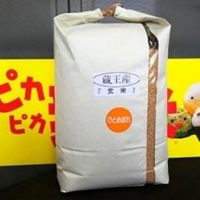 蔵王産ひとめぼれ(玄米)10kg