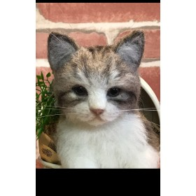 羊毛フェルト 猫 ~猫缶〜