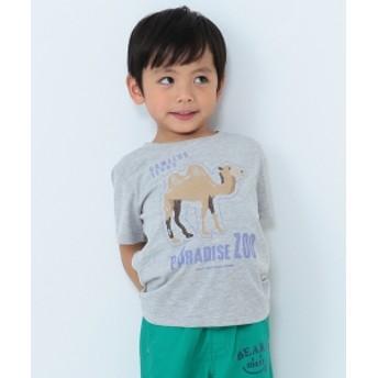 BEAMS mini / アフリカZOO Tシャツ (90~120㎝) キッズ Tシャツ T.GREY 110
