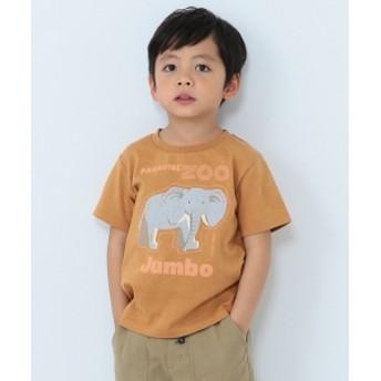 BEAMS mini / アフリカZOO Tシャツ (90~120㎝) キッズ Tシャツ CAMEL 120