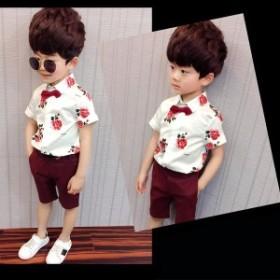 シャツパンツセットキッズ子供こども男の子カジュアルベルト付き蝶ネクタイ付き半袖五分丈パンツバラ薔薇かっこいいおしゃれ可