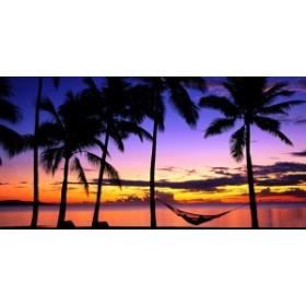 絵画風 壁紙ポスター  トロピカル サンセット ビーチ 夕陽 夕焼け ハンモック ハワイ 海 絶景 パノラマ SSST-009S1 (1152mm×576mm)