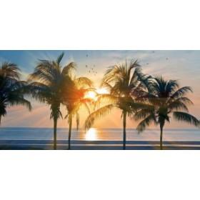 絵画風 壁紙ポスター  ハワイ オアフ島の夕陽とパームツリー 海 AT パノラマ HWI-101S1 (1152mm×576mm)