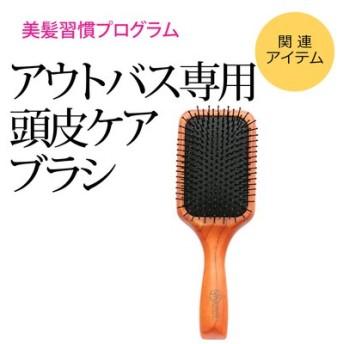 美髪習慣プログラム アウトバス専用 頭皮ケアブラシ フェリシモ FELISSIMO【送料:450円+税】
