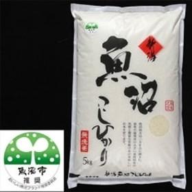 【令和元年産】【特産魚沼】魚沼産コシヒカリ 無洗米5Kg